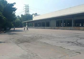 龙华区原业主独门独院钢结构16000平方出租图片3