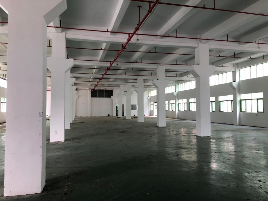 深圳沙井后亭一楼2500平方物流仓库