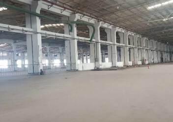 龙华区原业主独门独院钢结构16000平方出租图片4