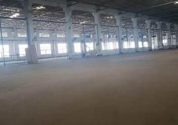 龙华区原业主独门独院钢结构16000平方出租图片2