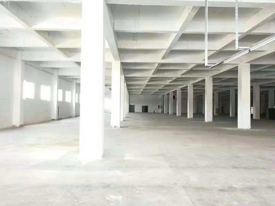 南沙东涌镇工业区24000方、电子、仓库、