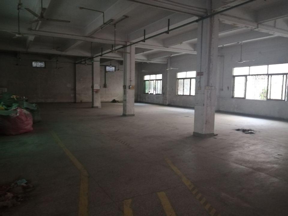 东莞市:茶山镇:标准厂房一楼