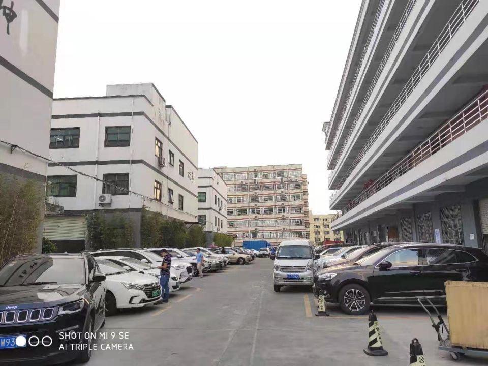 龙华大浪一楼精装600平米厂房出租仓库出租
