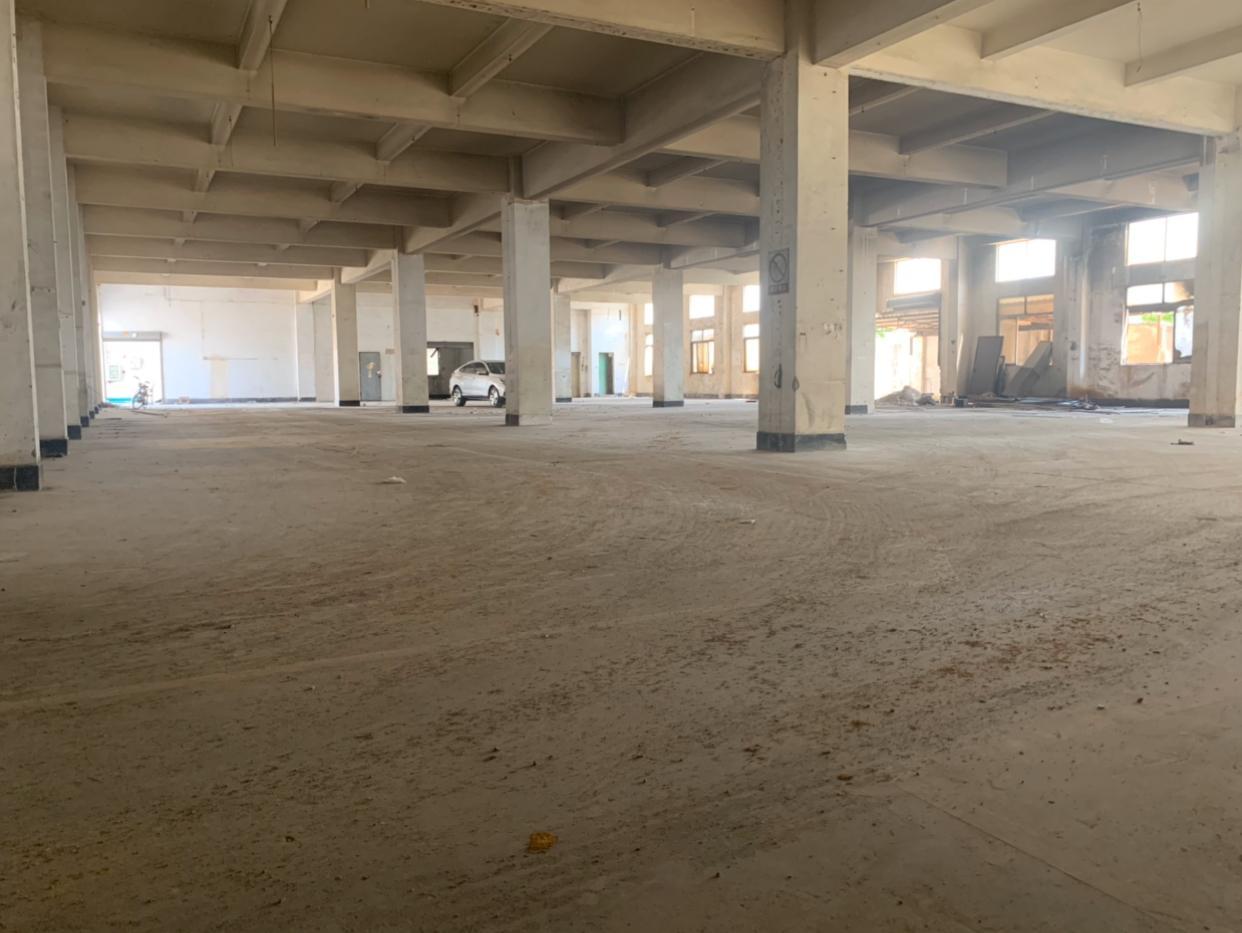 虎门镇沿江高速出口独院厂房分租一楼1500平方层高5.5米