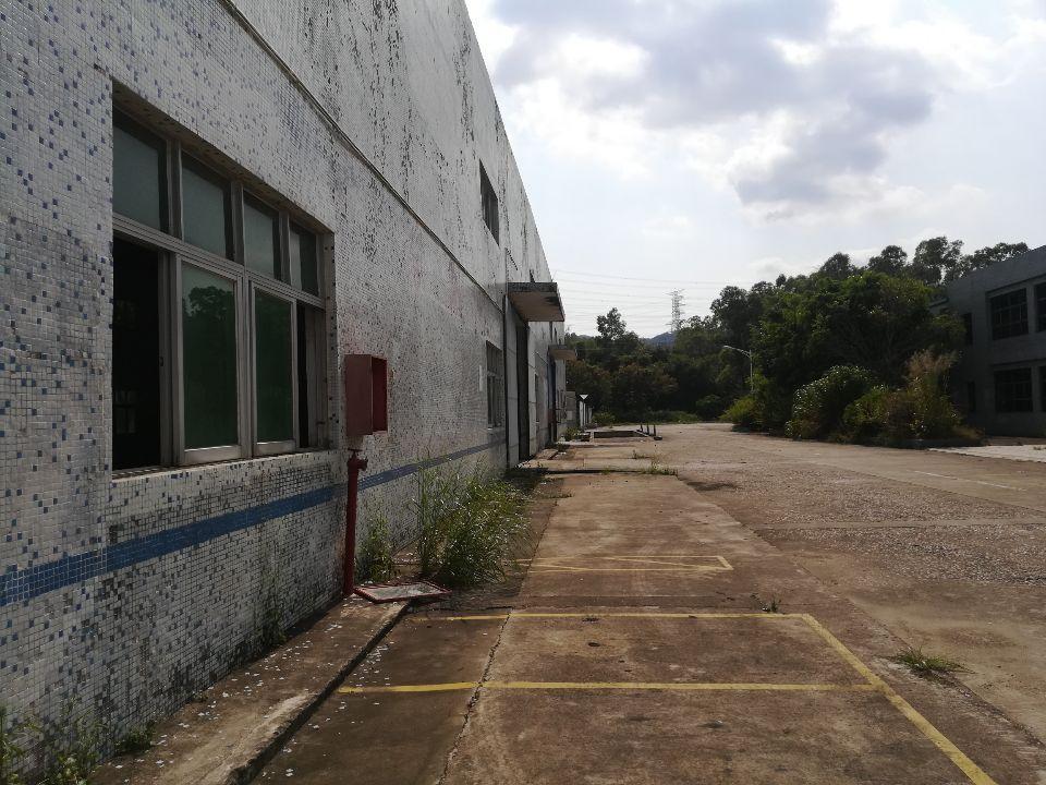 坪山独院钢构厂房仓库5000平方出租,带卸货平台