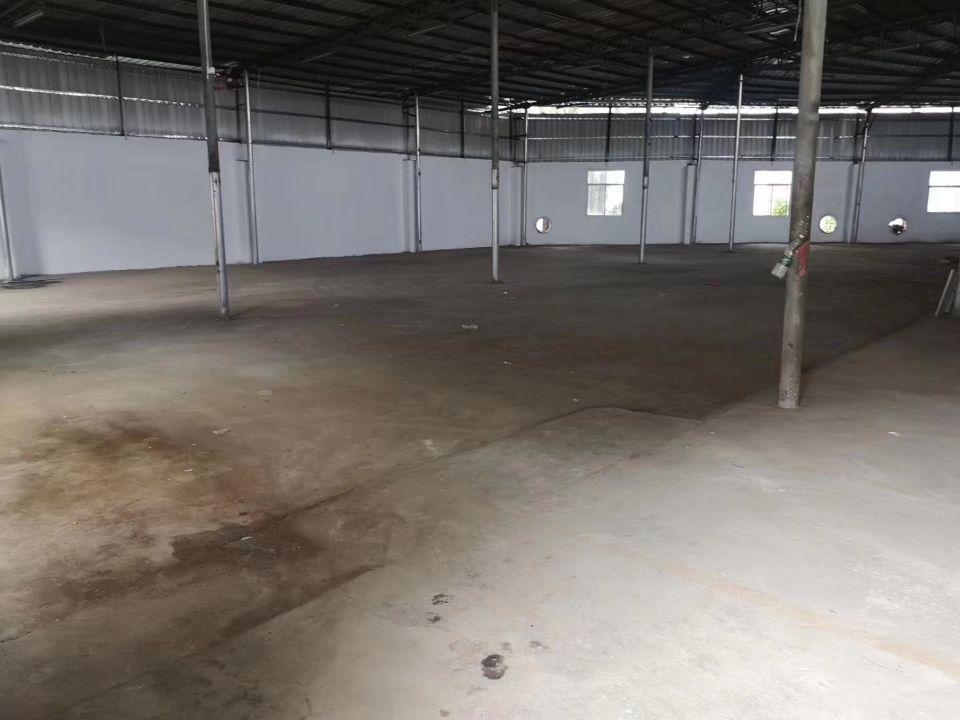 宝安西乡废品回收钢结构厂房!实际面积1300平米层高6.7米