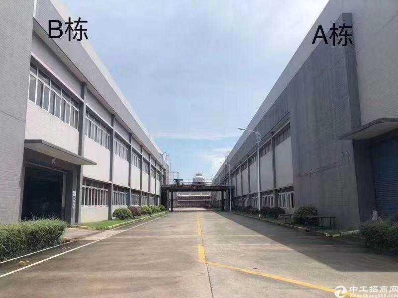 佛山南海区国有双证单一层独院厂房50000㎡出售高度12米