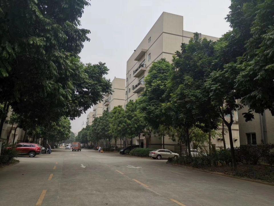 福永和平新出原房东厂房3楼1415平方带豪华装修不需要装让费-图7