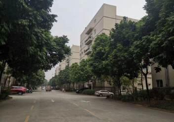 福永和平新出原房东厂房3楼1415平方带豪华装修不需要装让费图片7