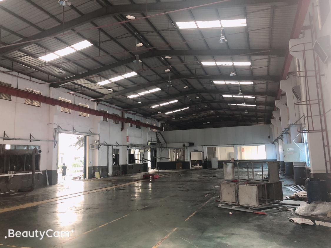松岗原房东钢构厂房一楼1500平方仓库招租
