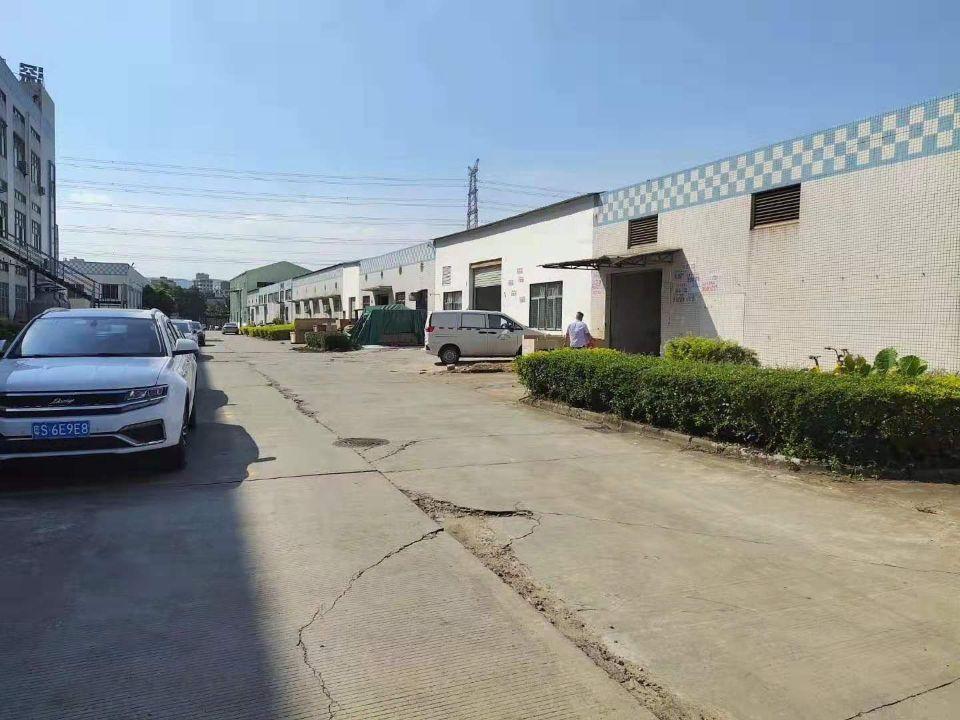 东莞市石碣镇单一层钢构厂房出售