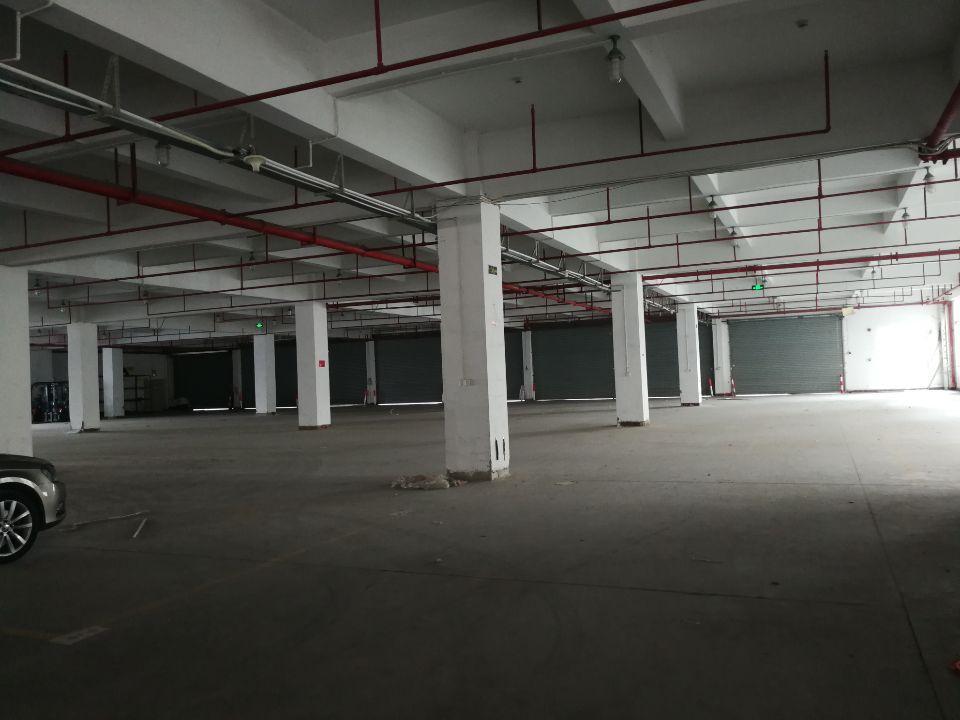 惠州水口带喷淋消防的一楼出租,大小可分租