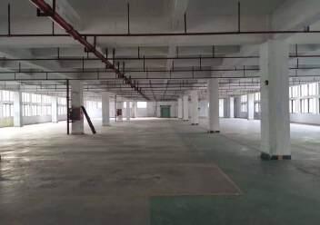 观澜桂花原房东独栋厂房,1-5层11230平米房租图片3