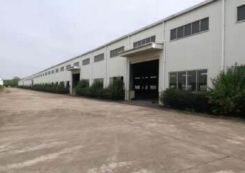 江门占地200亩建筑38000㎡国有双证重型工业厂房出售图片5