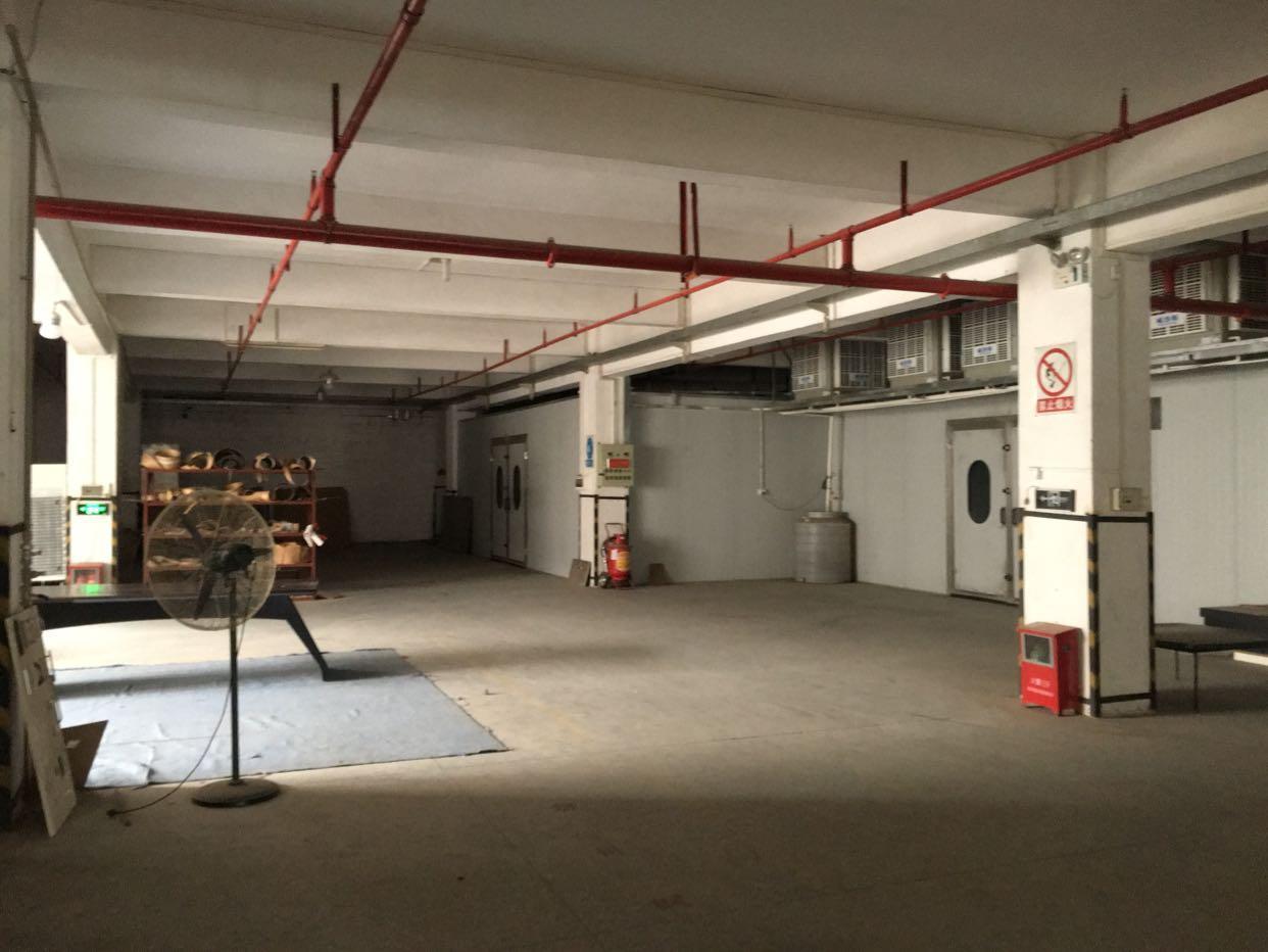 佛山市顺德区龙江镇标准厂房2000平方米一楼出租