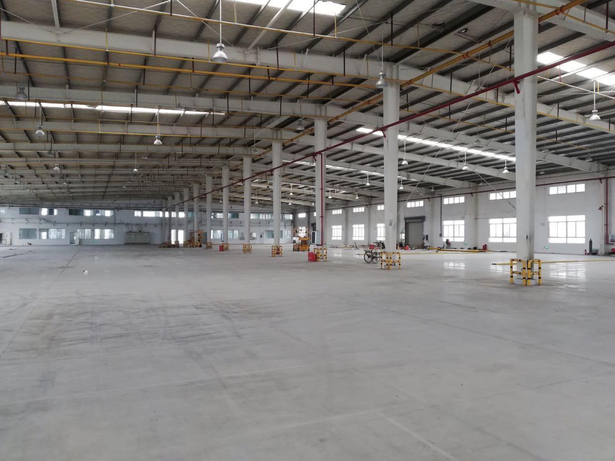 沌口5600平钢结构厂房 正规园区 可分割可做仓储