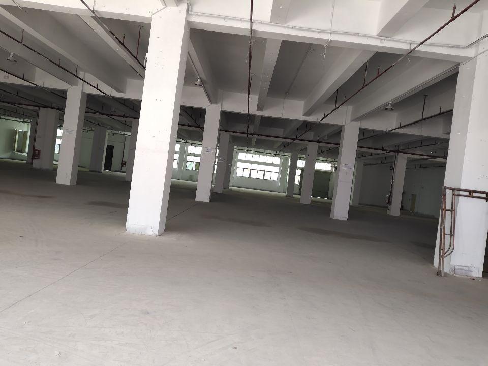 12000㎡标准物流仓库带缺货平台出租空地超大。-图4