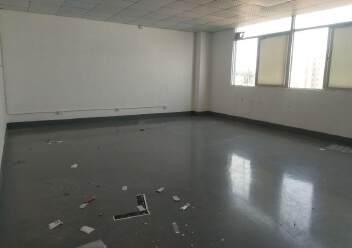 松岗燕川燕罗派出所附近楼上半层740平带装修厂房出租图片2