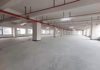 西乡固戍地铁口附近新出楼上整层3500平出租园区有高新补贴图片5
