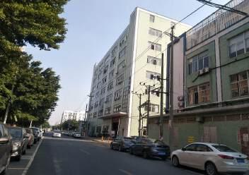 松岗燕川燕罗派出所附近楼上半层740平带装修厂房出租图片6