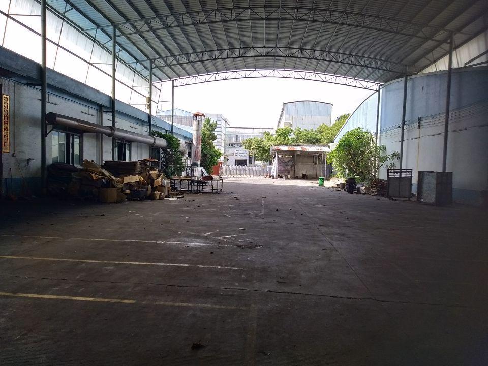 广州南沙区占地25独门独院厂房出售