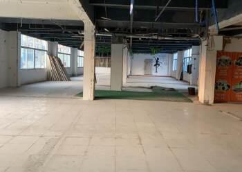 东城主山写字楼办公楼出租楼上1800方图片3