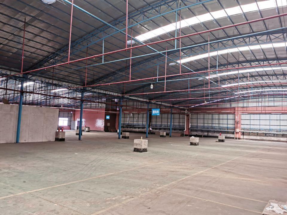 佛山乐从工业园单一层钢结构厂房招租带消防喷淋可做布匹仓库