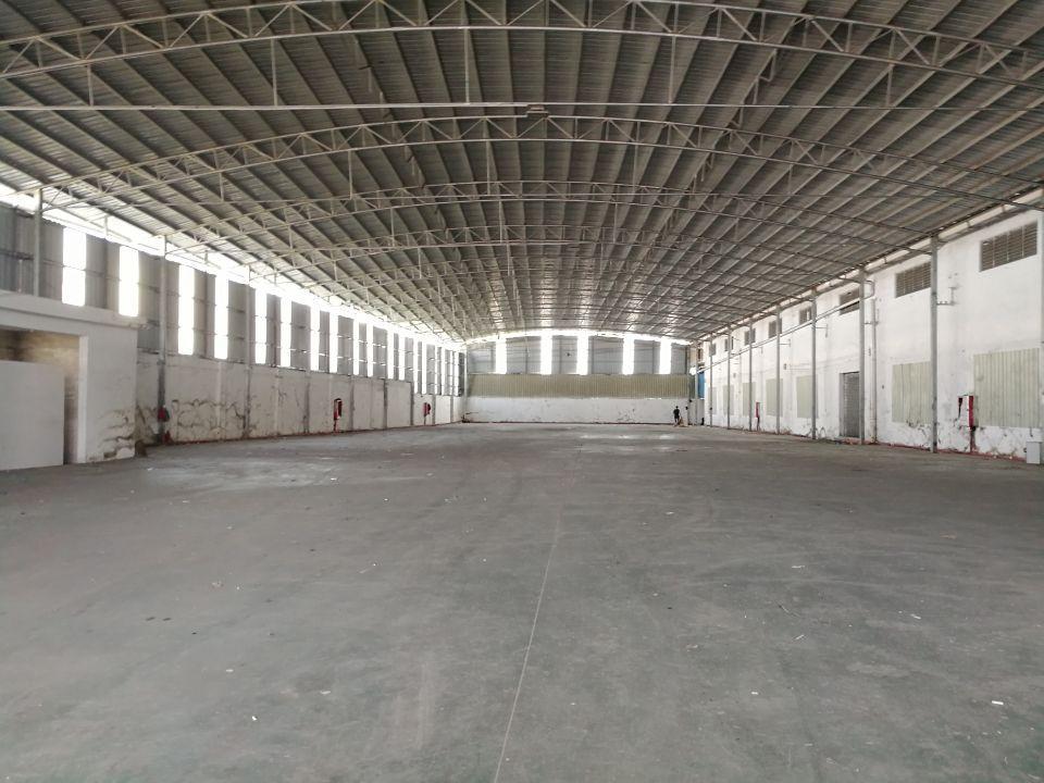 北滘主干道旁钢构厂房3000平,滴水十米,无中柱