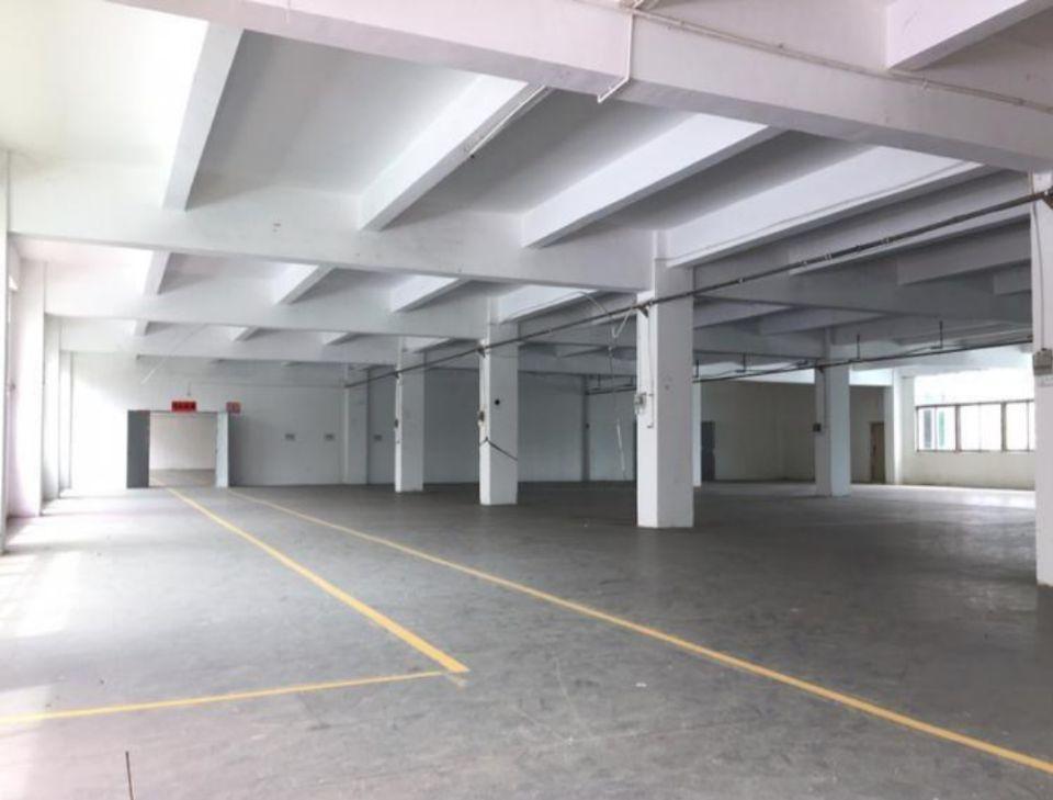 坪山独门独院厂房5530平米厂房出租,5年合同,带红本可分租