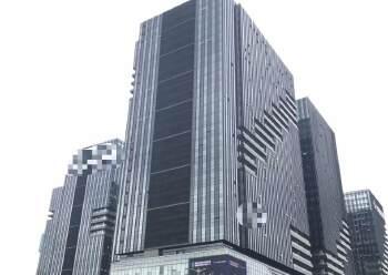 坂田双地铁口豪装甲级写字楼60/100/200…1320㎡出图片1