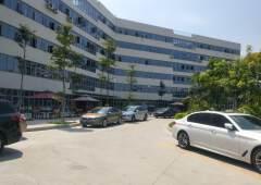 虎门镇北栅高速出口花园式写字楼总面积3980,可分租