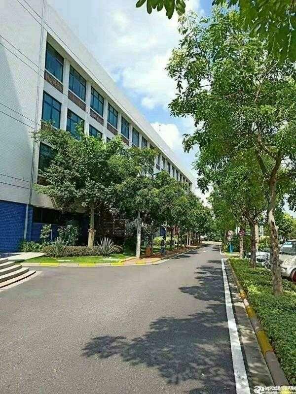 佛山―原房东―独院标准厂房出租1100平,带新地评漆