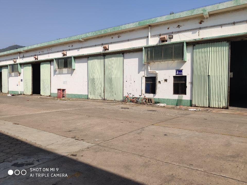 南山蛇口可短租的大仓库面积3000平到20000平无公摊