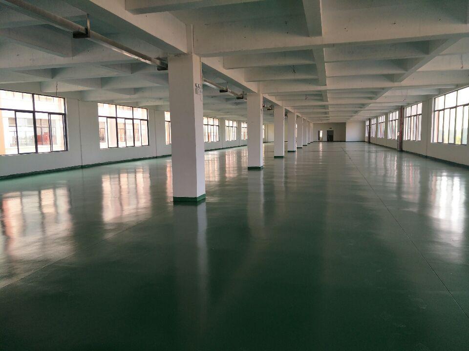 横店3000平米厂房出租,可分700平米,轻工仓储交通便利