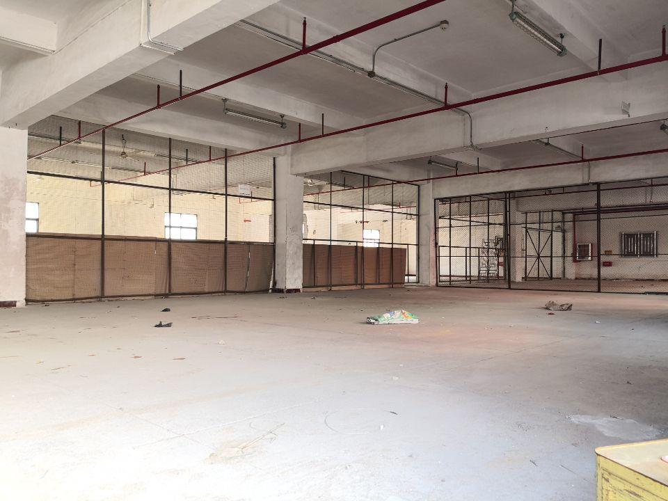 龙岗中心城盐龙大道边新出原房东独院厂房6100平可办环评可分
