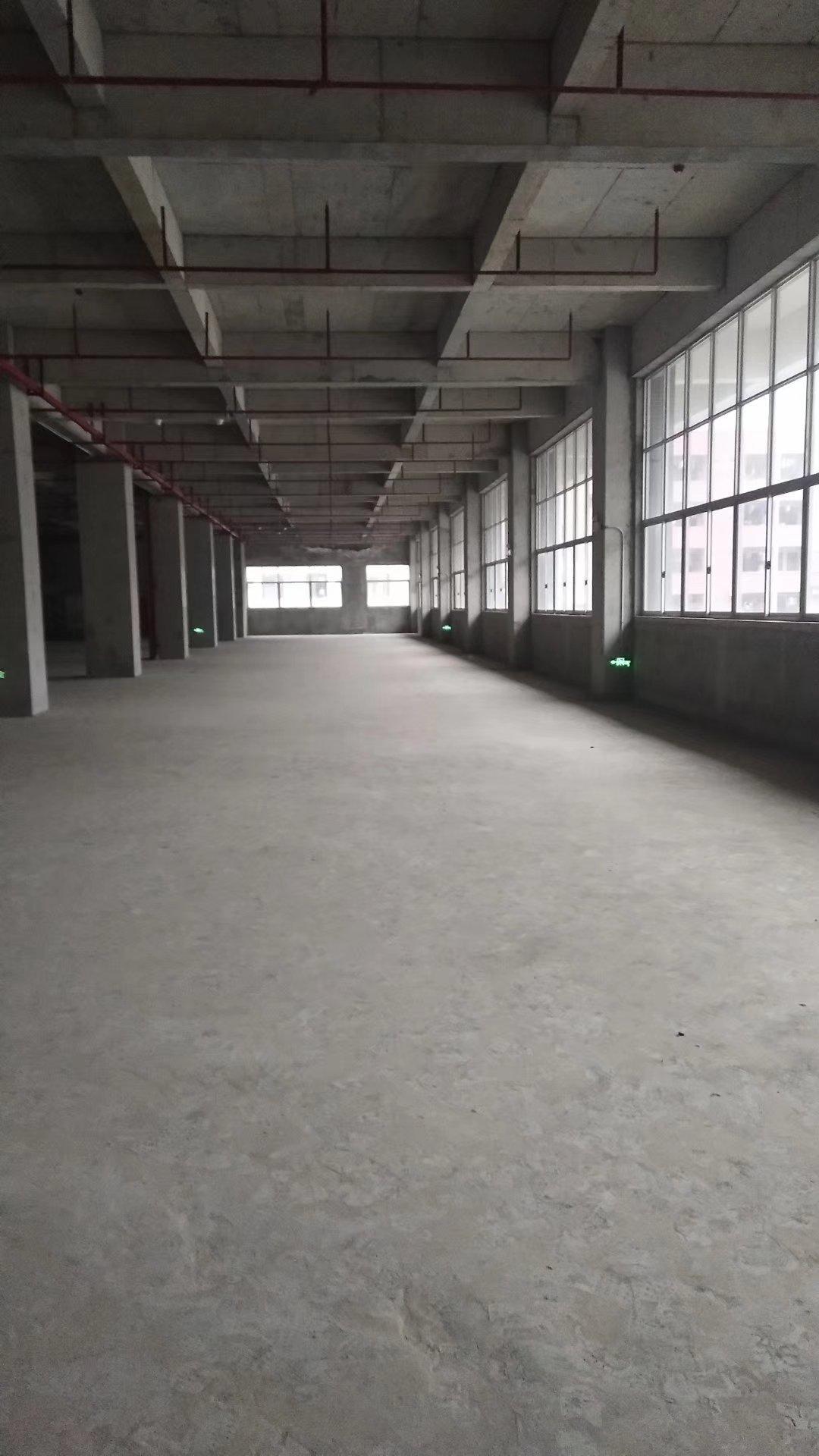 东莞市国有红本50年产权标准厂房6000平方出售