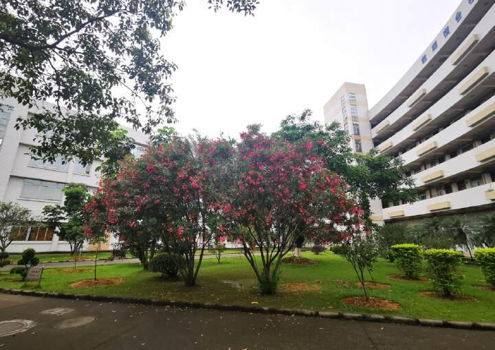 带电梯,可分租,商业综合楼,适合酒店医疗美容图片6