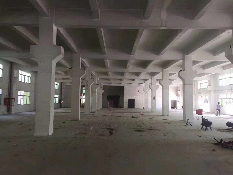 仲恺高新区标准一楼七米带牛角4100平方