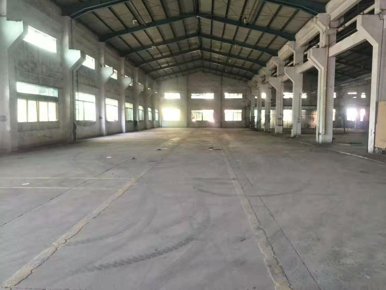 高明区荷城庆州工业区海田路附近刚岀单一层厂房仓库600平方