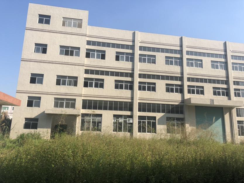 惠州市博罗杨村村委厂房11000平方独栋厂房出租