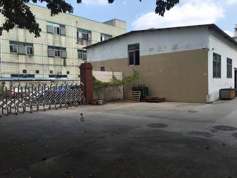 龙岗平湖独门独院可做偏门行业一楼厂房1050平方招租