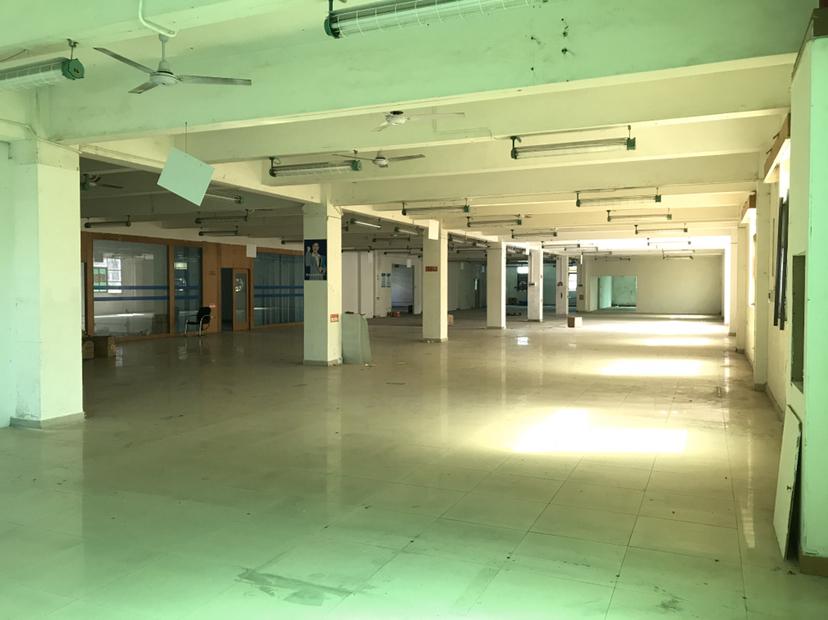 平湖带办公厂房1600平出租,可分租