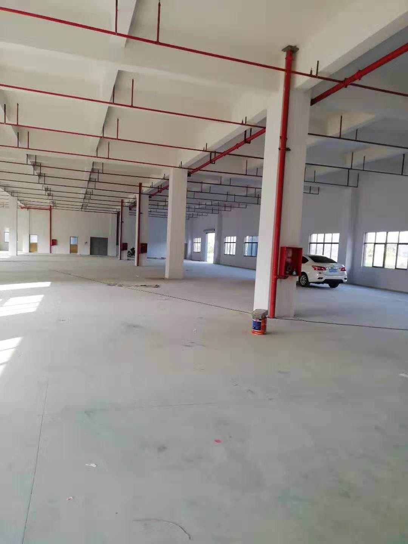 坪山大工业区原房东楼上1500平米厂房招商带消防喷淋