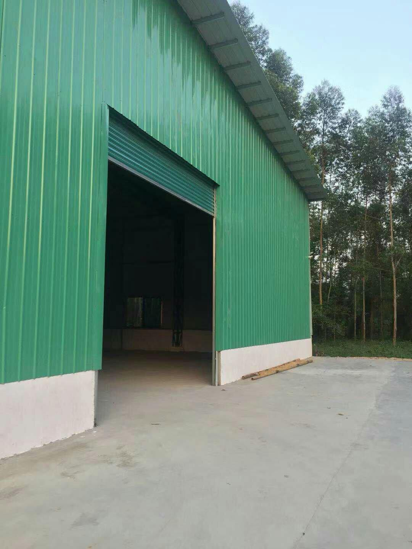 龙溪镇新出原房东独院钢构厂房,面积4500平,滴水高8米