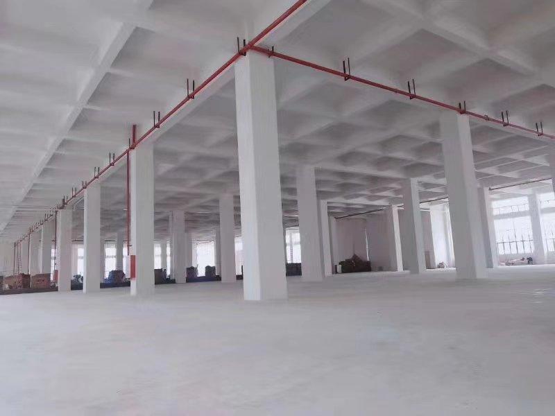 8年回本优质厂房,惠阳沙田占地9000㎡优质土地及建筑物出售-图3