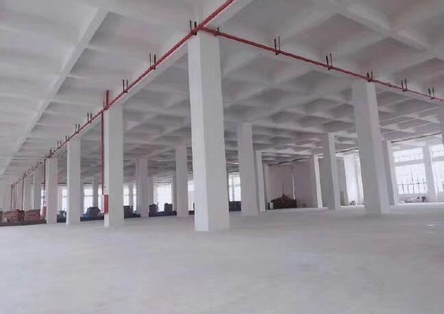 8年回本优质厂房,惠阳沙田占地9000㎡优质土地及建筑物出售