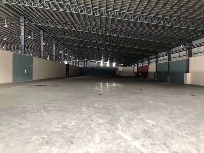 新出钢结构单一层仓库10000平方(可分租),高度8米。