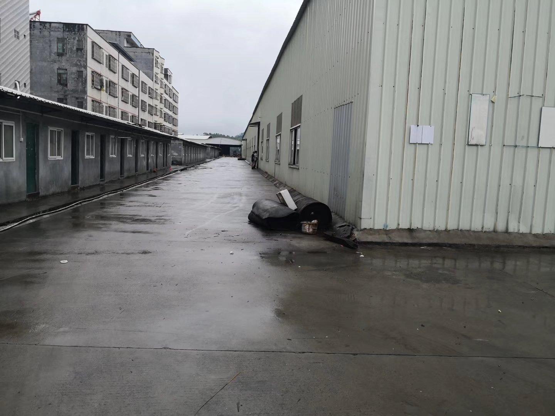 惠州石湾镇新出仓库厂房出租,9滴水