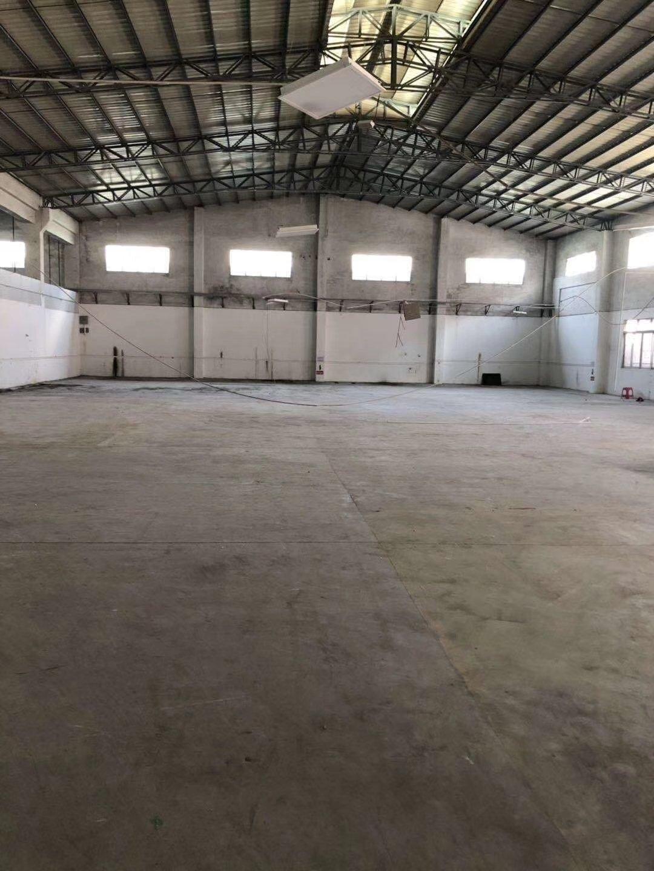 佛山高明区杨和明城荷城镇新出铁皮房800平方可办环评证件齐全