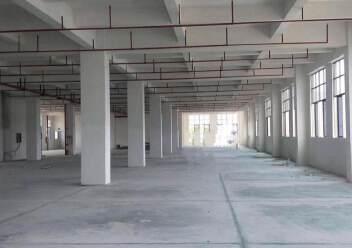 8年回本优质厂房,惠阳沙田占地9000㎡优质土地及建筑物出售图片1